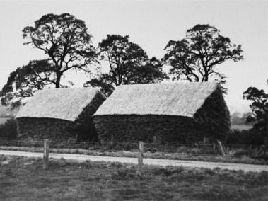 Straw Ricks on Lower Burston Farm built by Michael Coleman around 1955